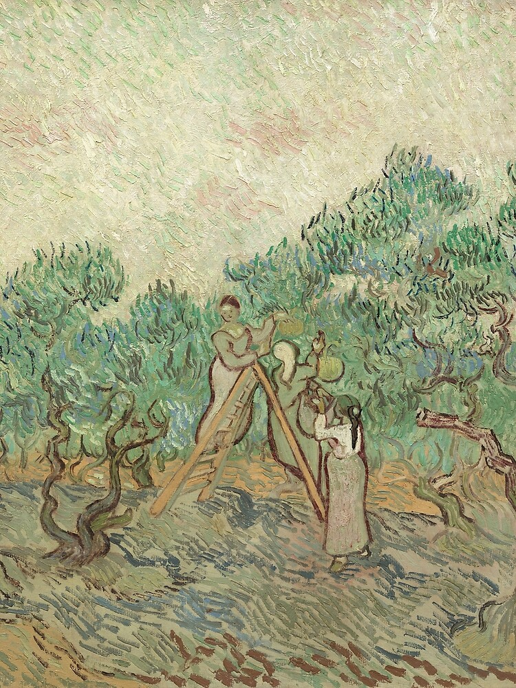 The Olive Orchard by Vincent van Gogh - Classic Art by podartist