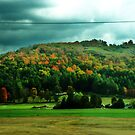 The hillside in New Hampshire by Allison  Flores