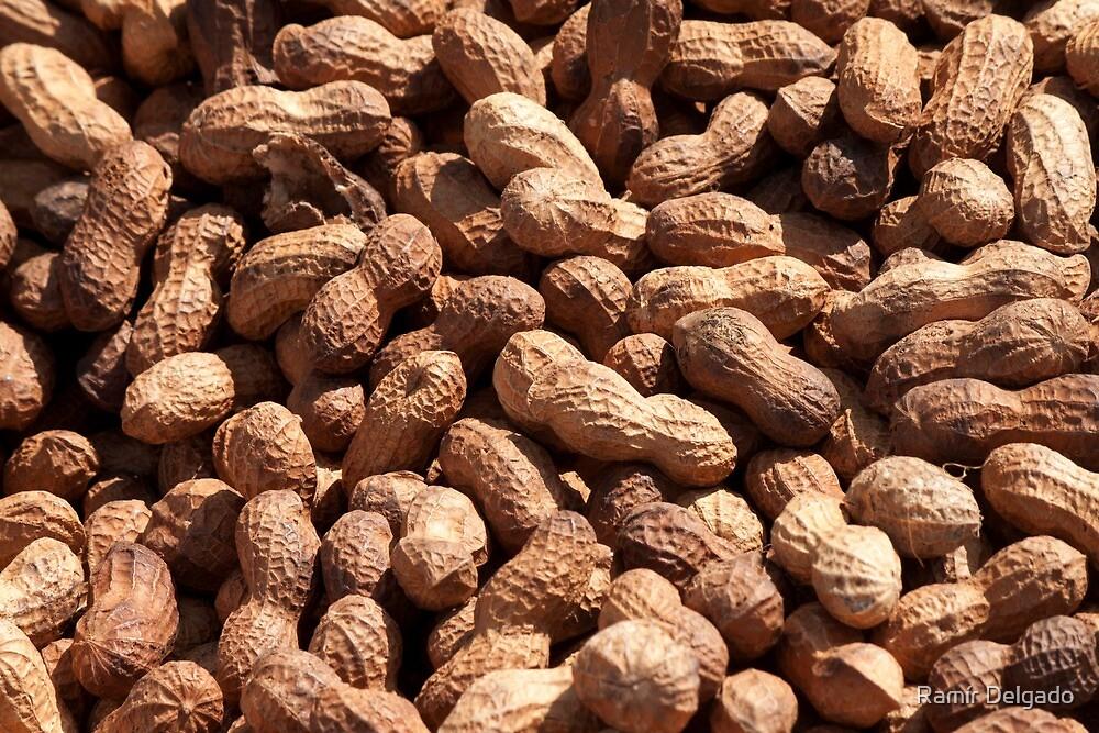 Peanuts by Ramír Delgado