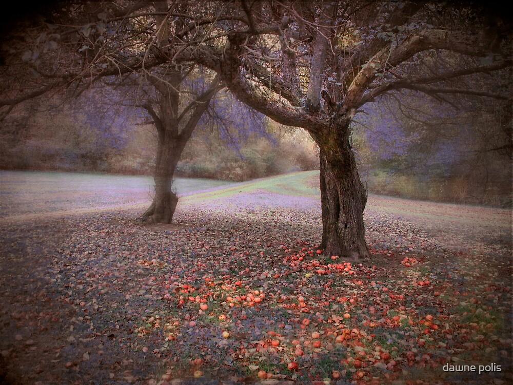 fallen fruit by dawne polis