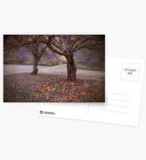 fallen fruit Postcards