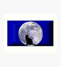Cat and the moon Art Print