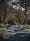 Hayfield Road (looking downhill) by Aaron Campbell