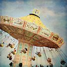the swings by SylviaCook