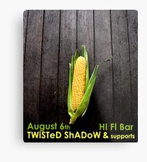 Twisted Shadow Flyer Metal Print