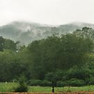 Hazy Day in the Valley by Chelei