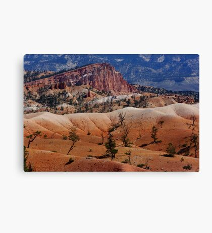 Colors of the Rainbow ~ Bryce Canyon, Utah USA Canvas Print