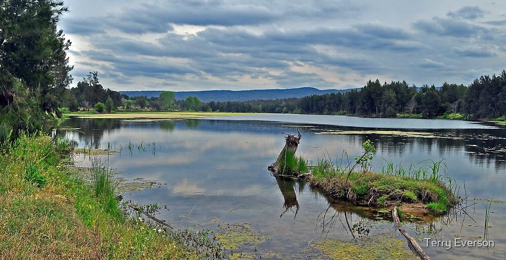 Yarrumundi  Riverside Reserve by Terry Everson