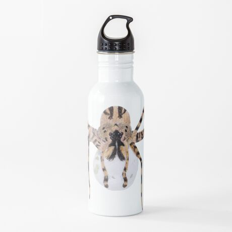 Spider with an Egg Sack Water Bottle