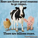 Here Are Three Great Reasons to Go Vegan by VeganStreet