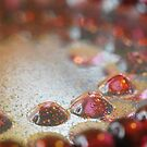 Jewels by sindrii