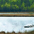 Swans by finnarct
