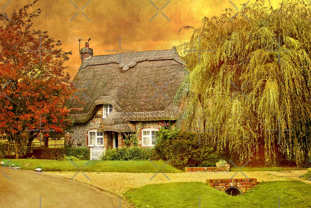 No Place Like Home by Catherine Hamilton-Veal  ©