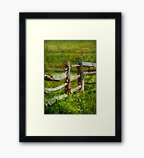 Country - The old fence post  Framed Print