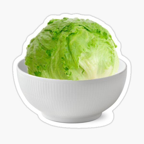 Just a head of lettuce....in a bowl Sticker