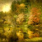 Autumn Mist by Michael  Petrizzo
