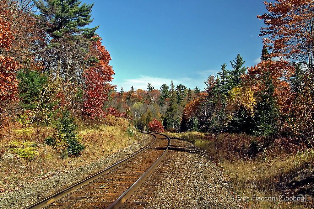 Steel rail to Agawa Canyon, Ontario Canada by Eros Fiacconi (Sooboy)