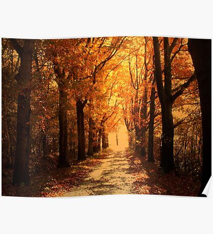 Country Road and Autumn Light Poster