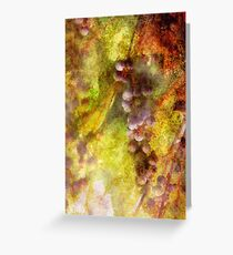 Kitchen - Wine - Grapes Greeting Card