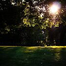 Golden Park-Scape by lillijy97