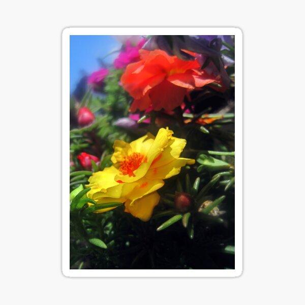 Summer Flowers 2 Sticker