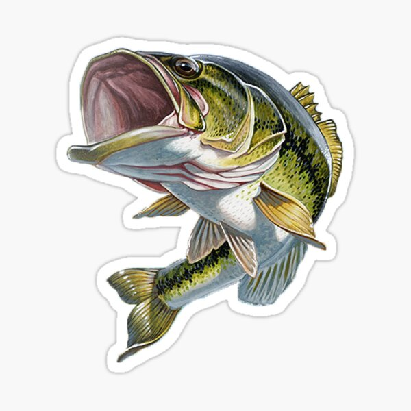 Bass Fishing Sticker
