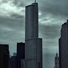 Trump Tower, Chicago, Illinois by Crystal Clyburn