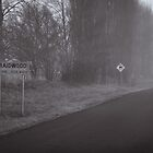 Road Braidwood, Australia by Phill Danze