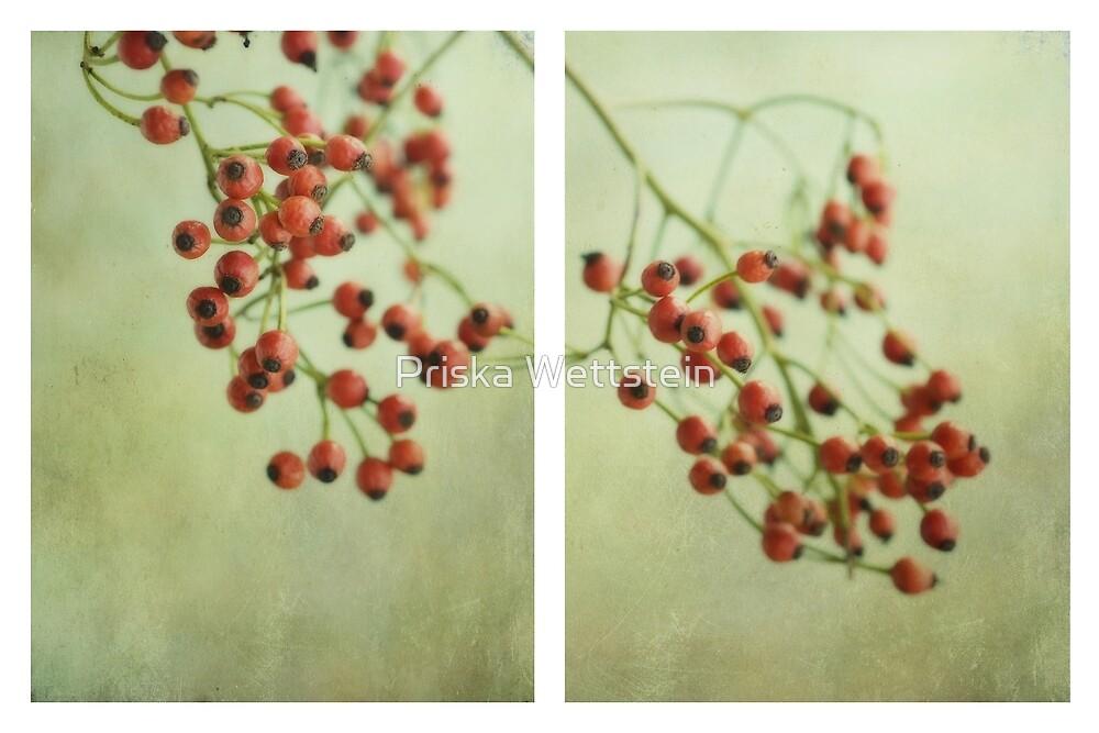 Frutti d'autunno by Priska Wettstein
