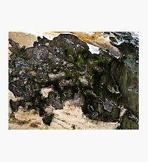 Abstract Minerals Photographic Print