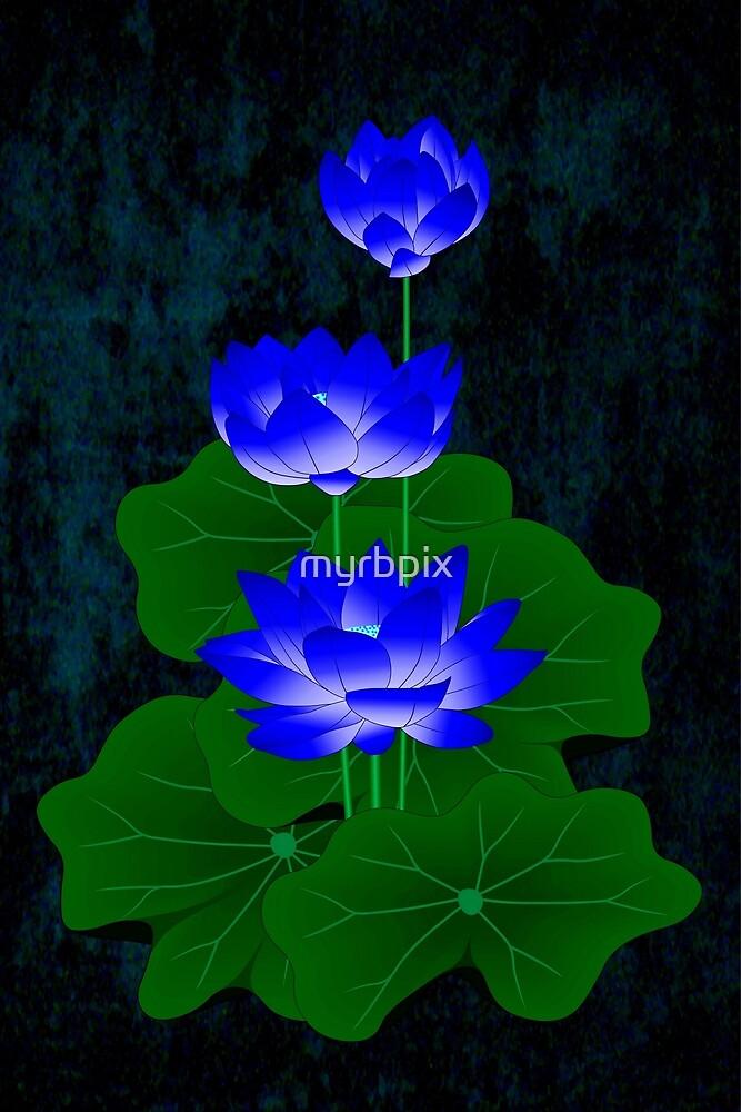 Blue Lotus by myrbpix