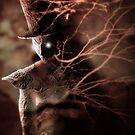 Tale With A Hat by Danilo Lejardi