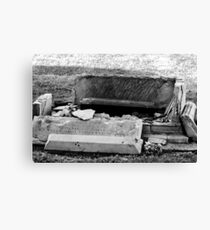 Destructive Decay Canvas Print
