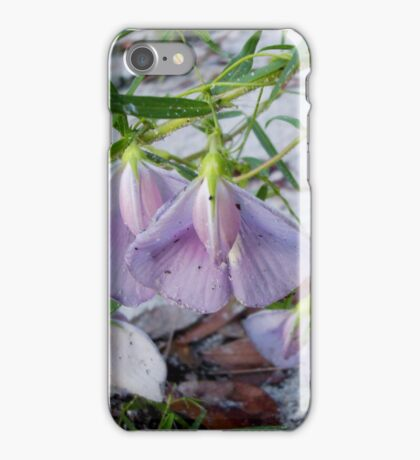Butterfly Pea - a species of Clitoria iPhone Case/Skin