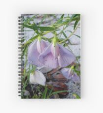 Butterfly Pea - a species of Clitoria Spiral Notebook