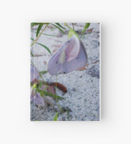 Butterfly Pea - a species of Clitoria Hardcover Journal