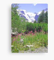 Morteratsch Glacier Trail Pontresina Switzerland Canvas Print