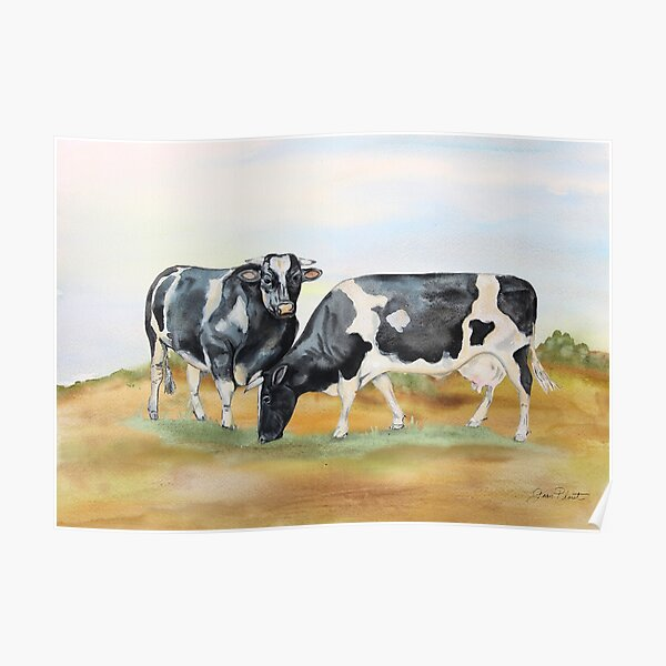 Farm Animals In The Pasture-Cows Poster