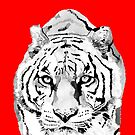 Tiger Red by christinahewson