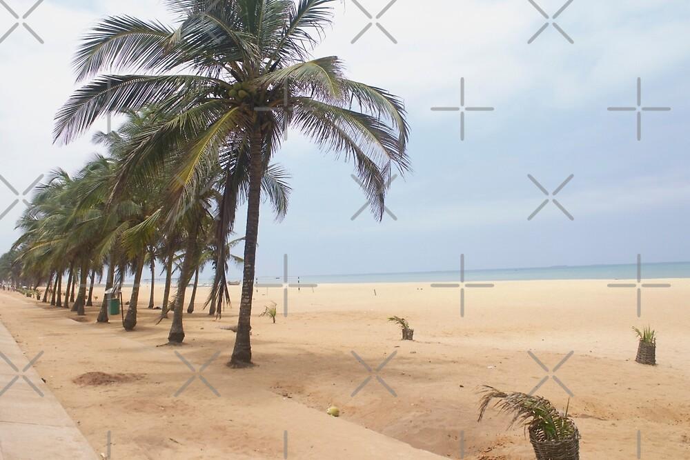 The Ocean Strip  by Raquel Fletcher
