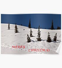 Whimsical Trees (Christmas Card) Poster