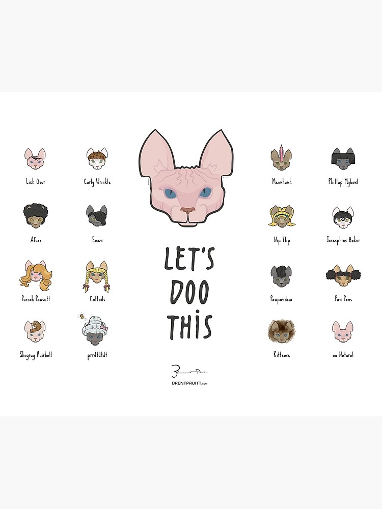 Let's Doo This [Trendy Hair Styles for Sphinx Cats] by brentpruitt