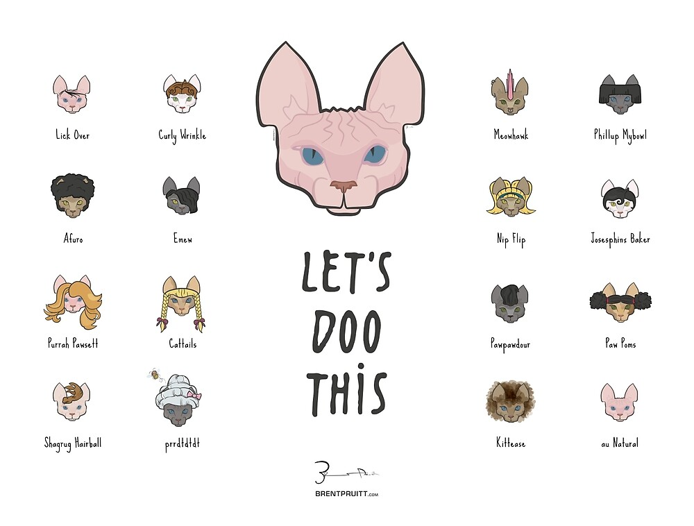 Let's Doo This [Trendy Hair Styles for Sphinx Cats] by Brent Pruitt