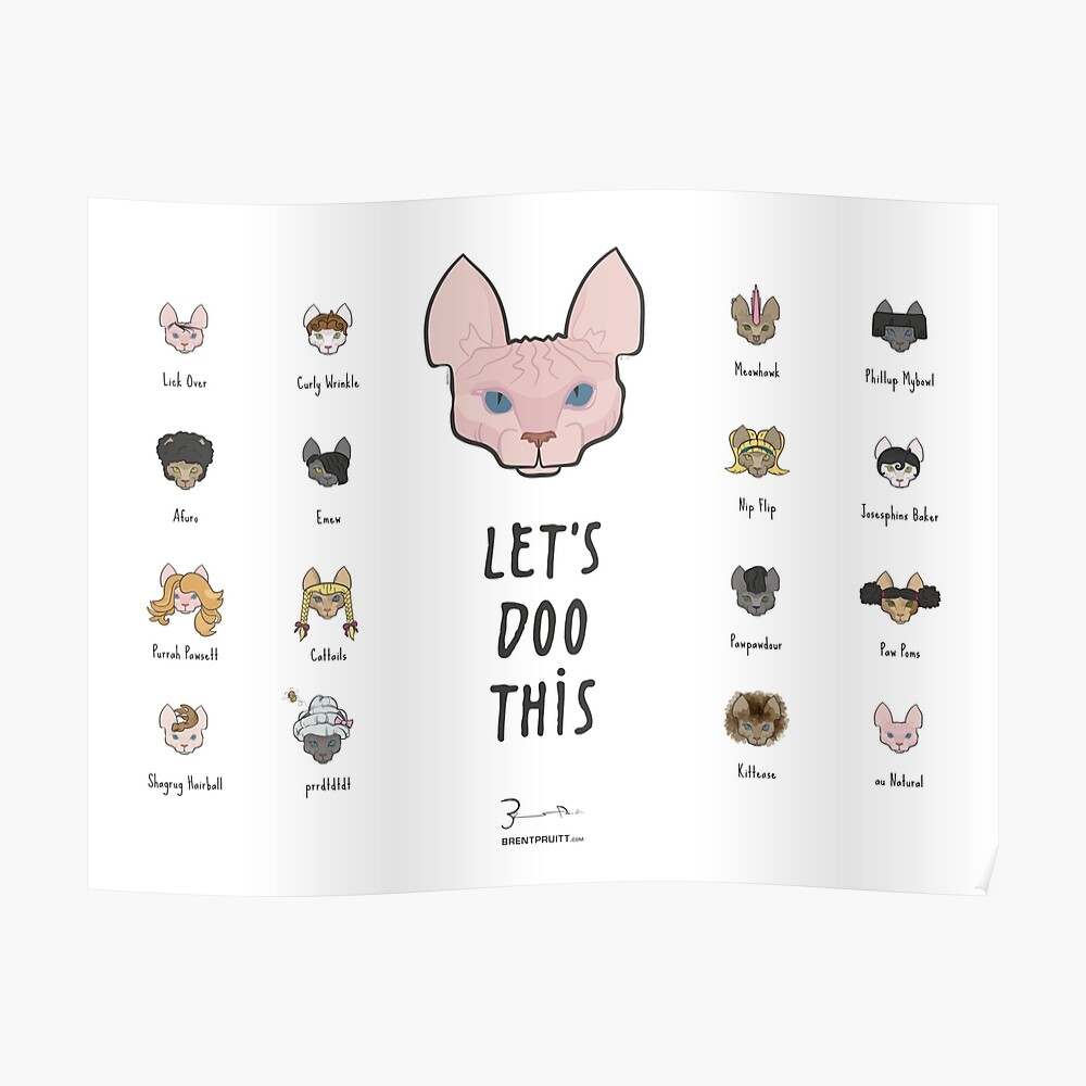 Let's Doo This [Trendy Hair Styles for Sphinx Cats] Poster