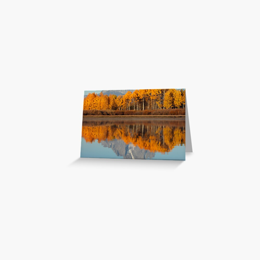 Aspen Grove Aflame At The Oxbow Greeting Card