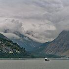 Gletscher-Schacht-Nationalpark, Alaska von Lanis Rossi