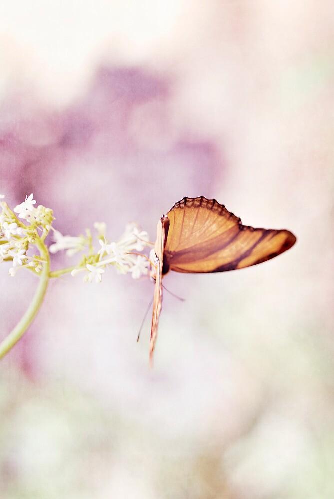 Pastel Butterfly by JRoseStudio
