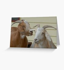 Have you heard the latest...? Greeting Card