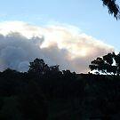 smoke ball from a bush fire by Bettysplace