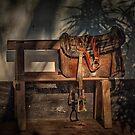 The Waiting Saddle by photograham